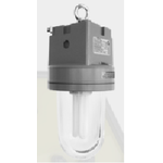 EXPLOSION PROOF PENDANT LIGHT 100W ATEX